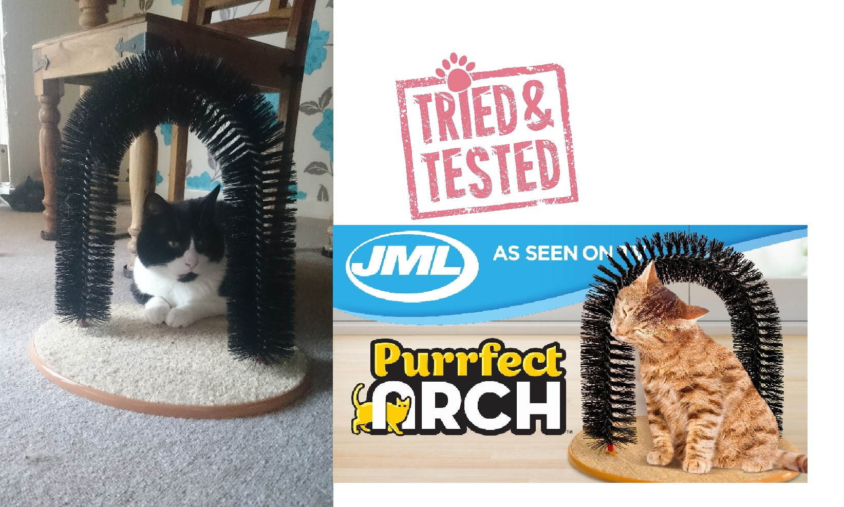JML PURRFECT ARCH WITH LOGO